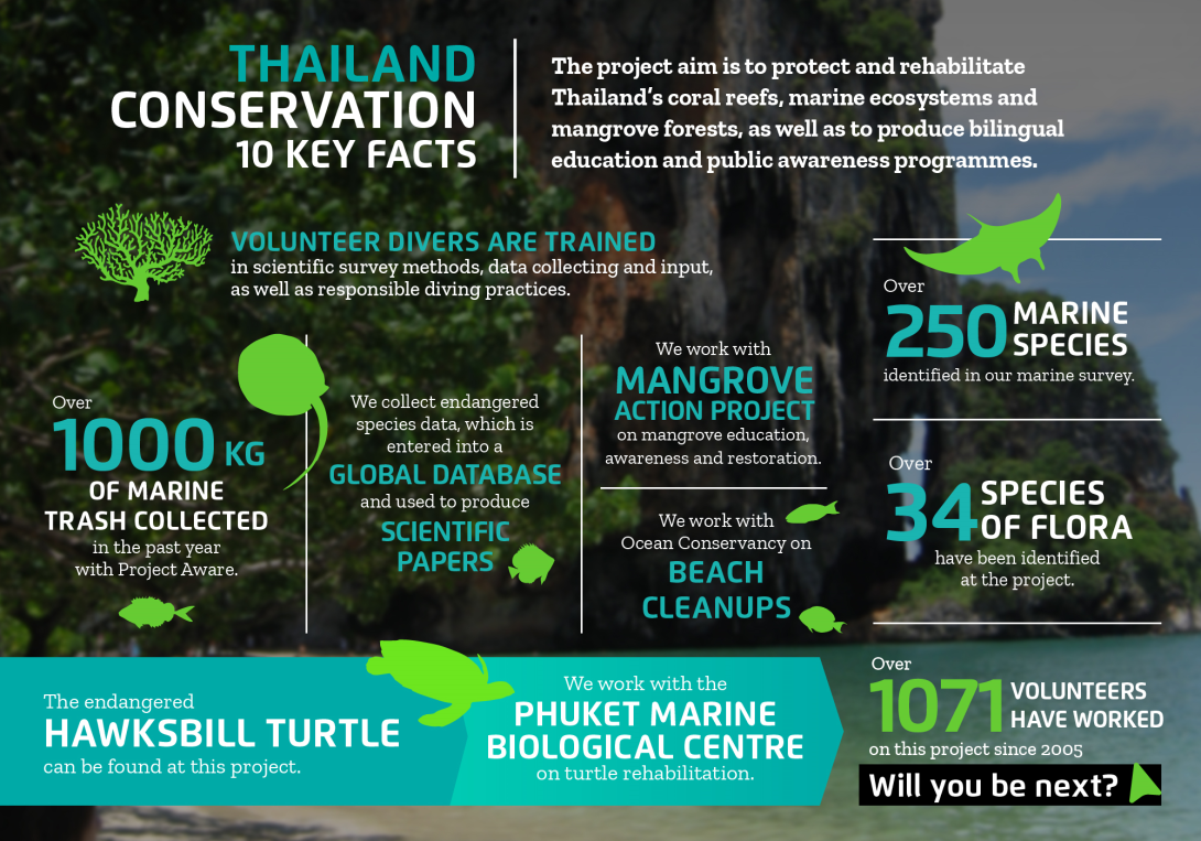 Interesting facts about conservation volunteering in Thailand with projects abroad
